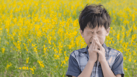 Gesundheit! 5 Ways Pollen Levels Can Be a Marketer's Best Friend
